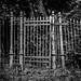 The Gate by Buecherkoenig