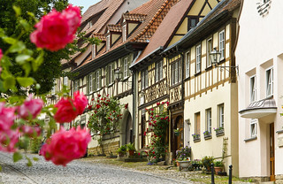 Königsberg, Salzmarkt mit Rosen