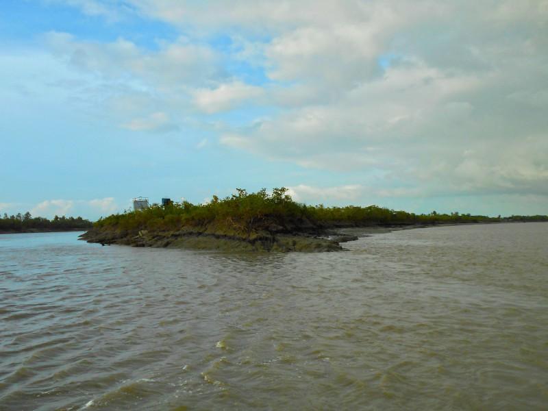 Delta - Sundarban, India
