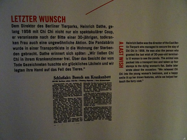 Naturkunde Museum Berlin 17.07.2015  0110