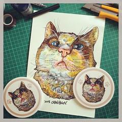 寵物速寫:Cocoa #CRAZYJASON #drawing #sketch #cat #colorpencil #kaohsiung #taiwan #gife