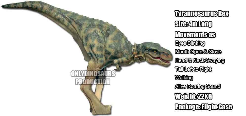 T-Rex Costume Rent in Poland