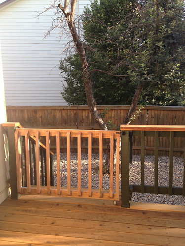 Deck Stairs with Gate