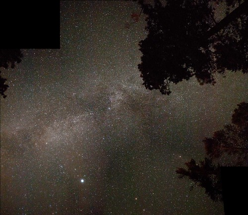 park panorama mist canada tree night forest way stars long exposure mosaic galaxy milky provincial bromley milkyway