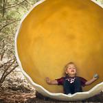 Meditation in a Dinosaur Egg