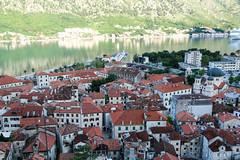 Montenegro-39.jpg