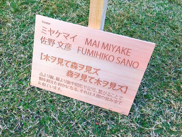 toomilog-tumikinohiroba015