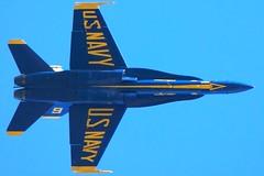 Blue Angels F/A-18 from below, tight. Fleet Week San Francisco CA 2015 DSC_0884.2