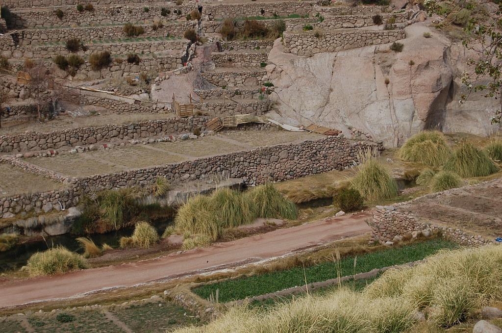 Algunas Terrazas Creadas Por Los Indígenas Atacameños En L