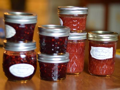 elderberry etc