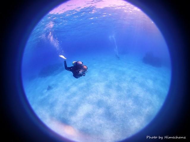 今日は最後まで黒島ブルーに癒やされました♪