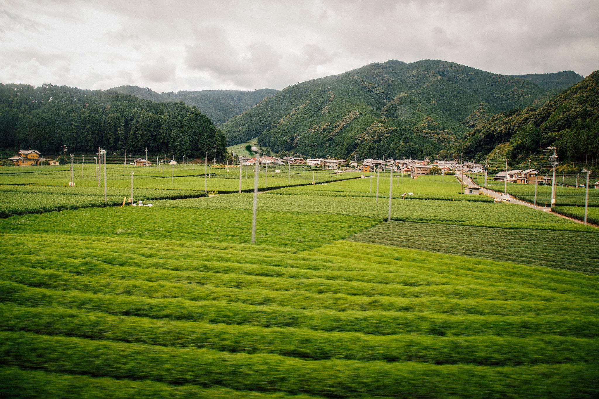 2014-09-26 大井川鉄道 024