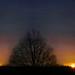 Heath High Level - Dawn, 24xii15 by DavidCooperOrton