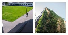 Dessau-#1