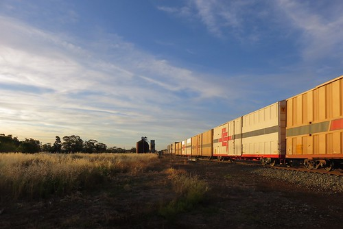 Late afternoon sun light bathes the almost 18ft tall 'PBHY' wagons belonging to the SCT Logistics company.