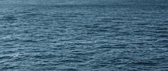 Moody waters