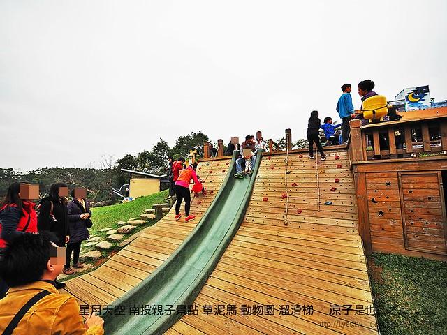 星月天空 南投親子景點 草泥馬 動物園 溜滑梯 23
