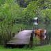 Loch Ard by lovestruck.