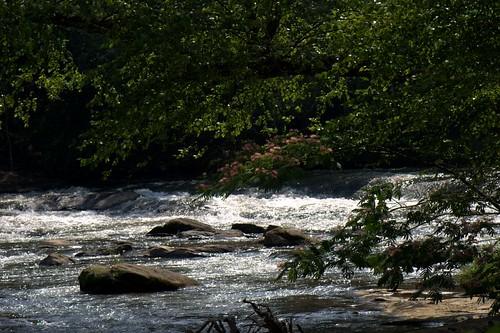 rockdale naturetrail southriver