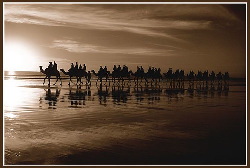 Camel ride on Cable Beach 2