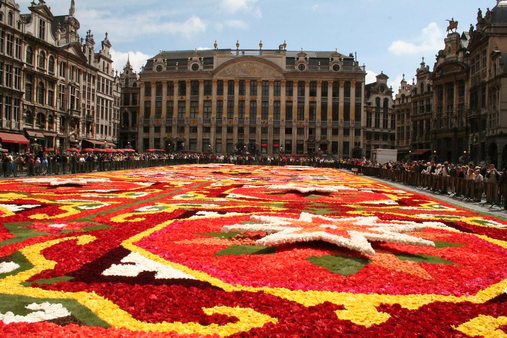 flower carpet designs carpet designs abc carpet rugs