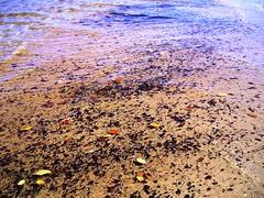 Praia em Santo André