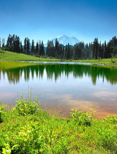trees reflection topf25 water landscape ilovenature topv555 nikon d70s tokina mountrainier 1224mmf4 saywa specland tipsoolake