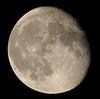 Waning Gibbous, 91% of the Moon is Illuminated IMG_3478