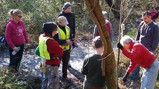 Belle Isle tree planting demo