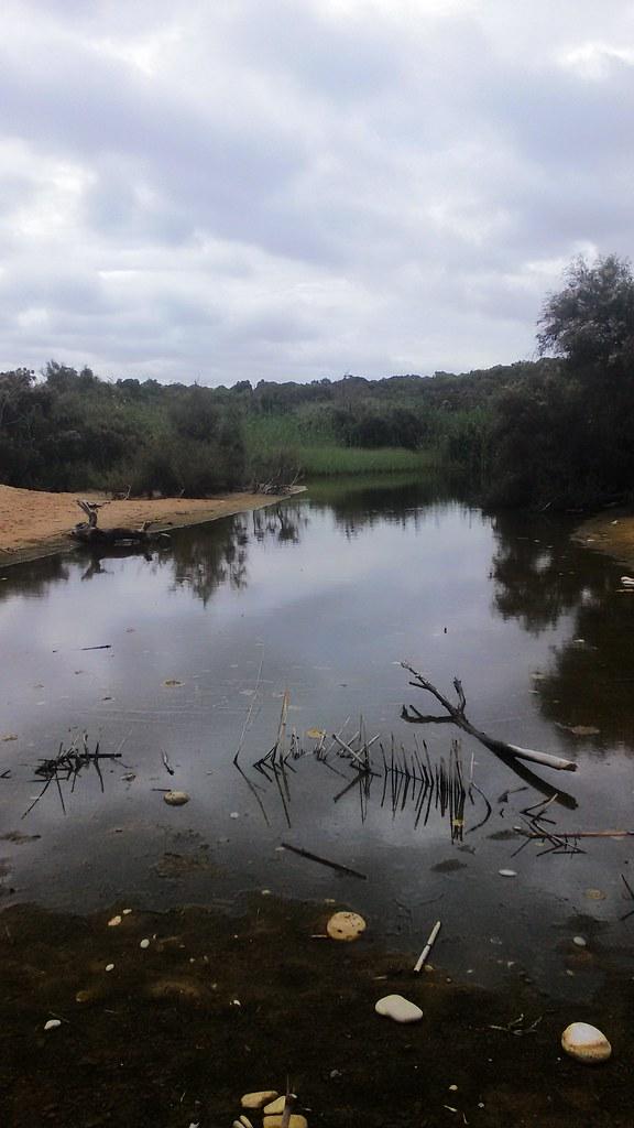 Foce del fiume Platani