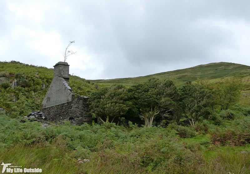 P1150799 - Abergynolwyn to Castell y Bere