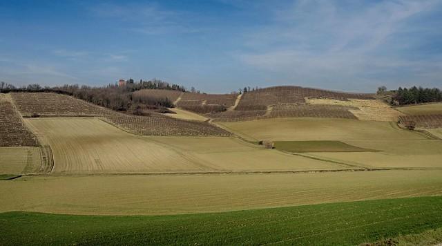 Arature invernali nel Monferrato, Sony DSC-HX50