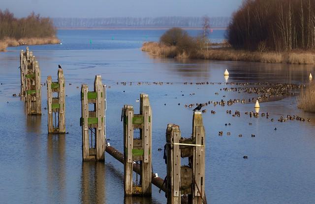 Vlietdijk - Brabant