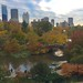 Autumn Colors in NY by jurvetson