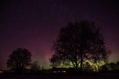 Aurora Borealis - December 2015 - 7