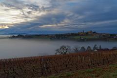 Rhône - Oingt