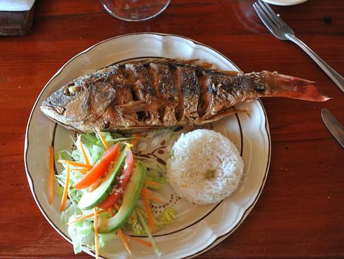 Red Snapper Lunch Manialtepec Oaxaca