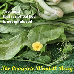 The Complete Wendell Berry