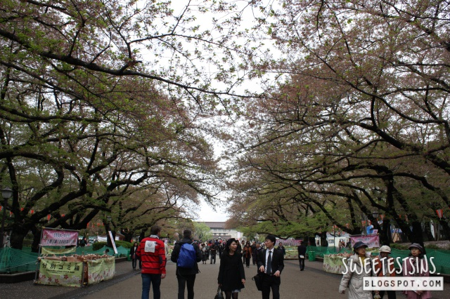 japan tokyo trip ueno park 25