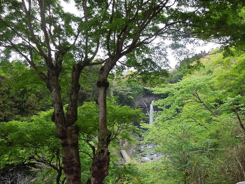 白糸の滝 Shiraito Falls-0002