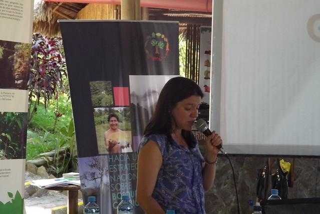 Avanza elaboración conjunta de Estrategia Nacional sobre Bosques y Cambio Climático