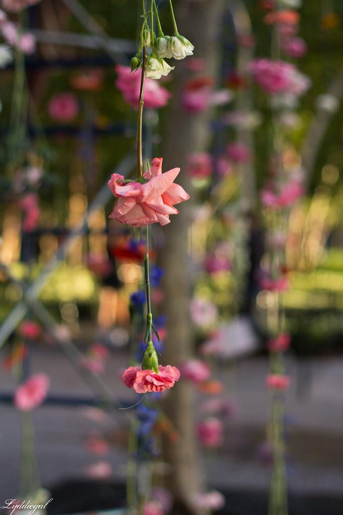 flower show-3.jpg