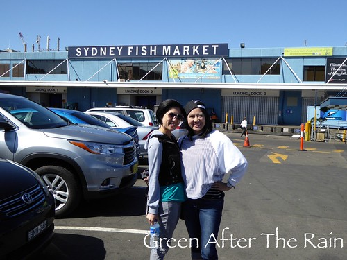 150908c Sydney Seafood Market _06 _SH