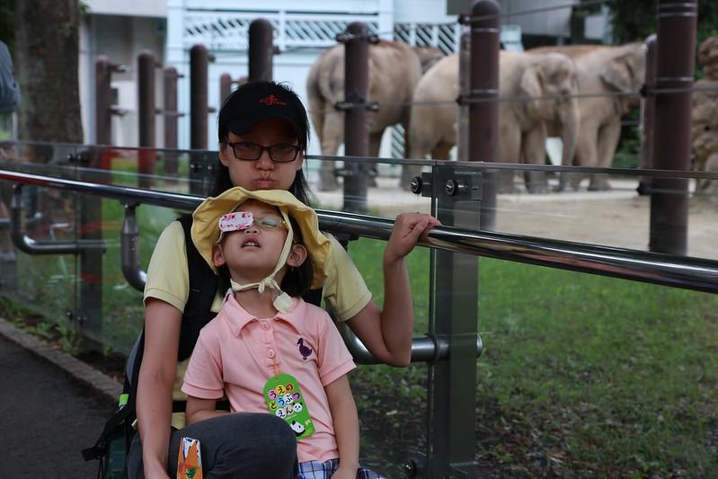 母女和大象合照