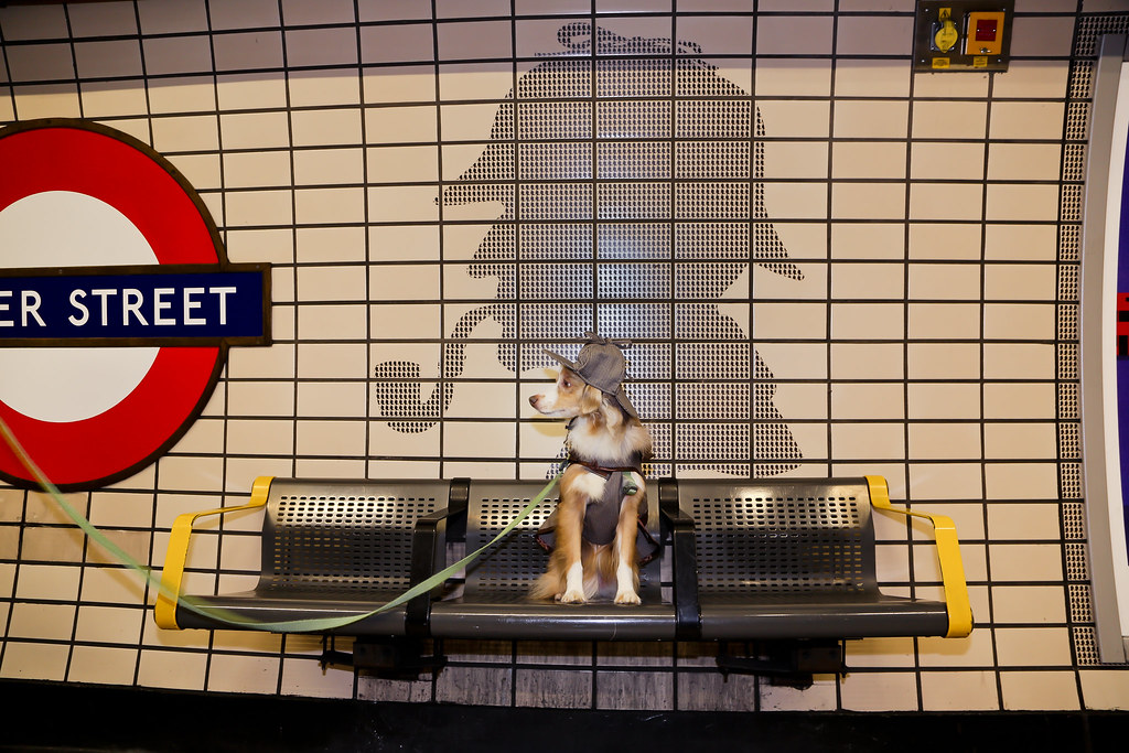 Laika as Sherlock Holmes in Baker Street Station | London, UK