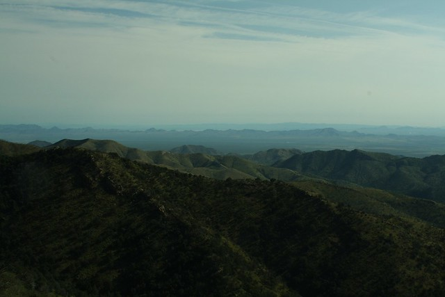 Onion Saddle, Chiricahua Mountains