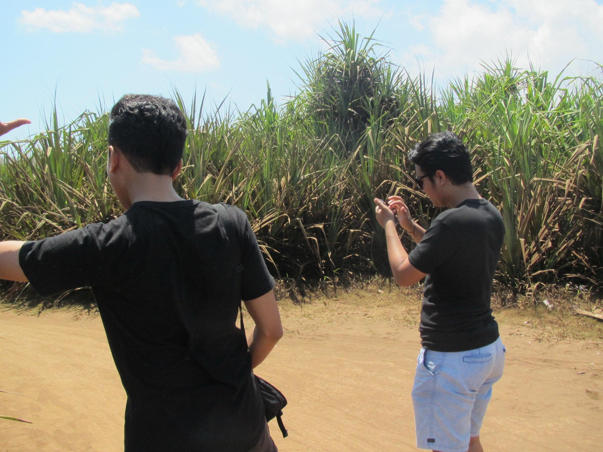 Kabur ke Nusa Lembongan 3