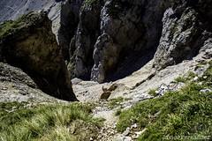 Canal del Vidrio