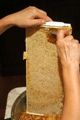 honey comb IMG_3899