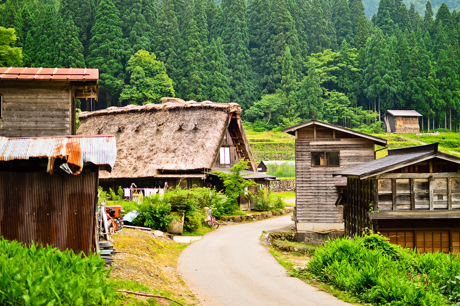 Shimizu Inn, Ogimachi, Shirakawa-gō
